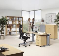 SET-Angebot Einzelarbeitsplatz PROFI MODUL Buchedekor