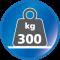 Belastbar bis 300 kg